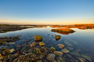 Seahouses Rock Pools